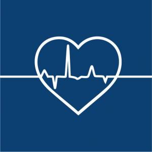 Herz Kardiologie Tierarzt Rothenburg